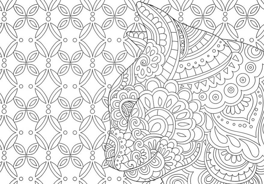 Catological Cat Adult Coloring Book