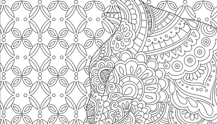 Cat Adult Coloring Book